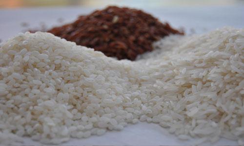 סוגי אורז: פרסי, אדום,עגול